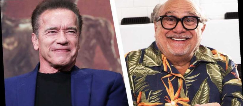 Danny Devito Says He S Better Than Arnold Schwarzenegger At Almost Everything Popular Indi News